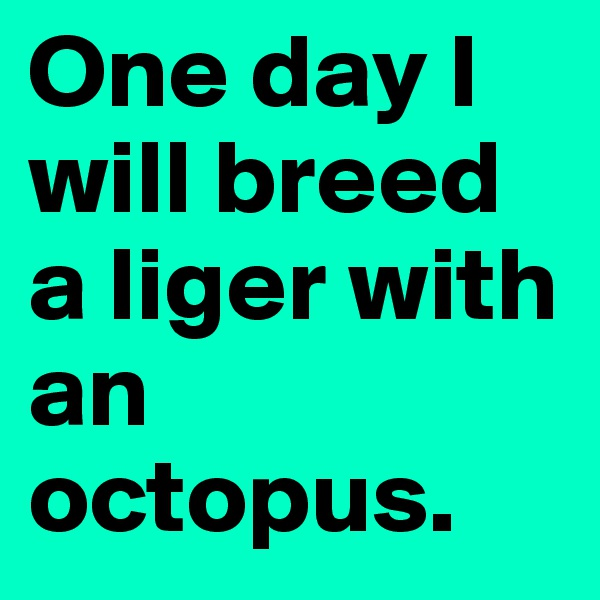 One day I will breed a liger with an octopus.