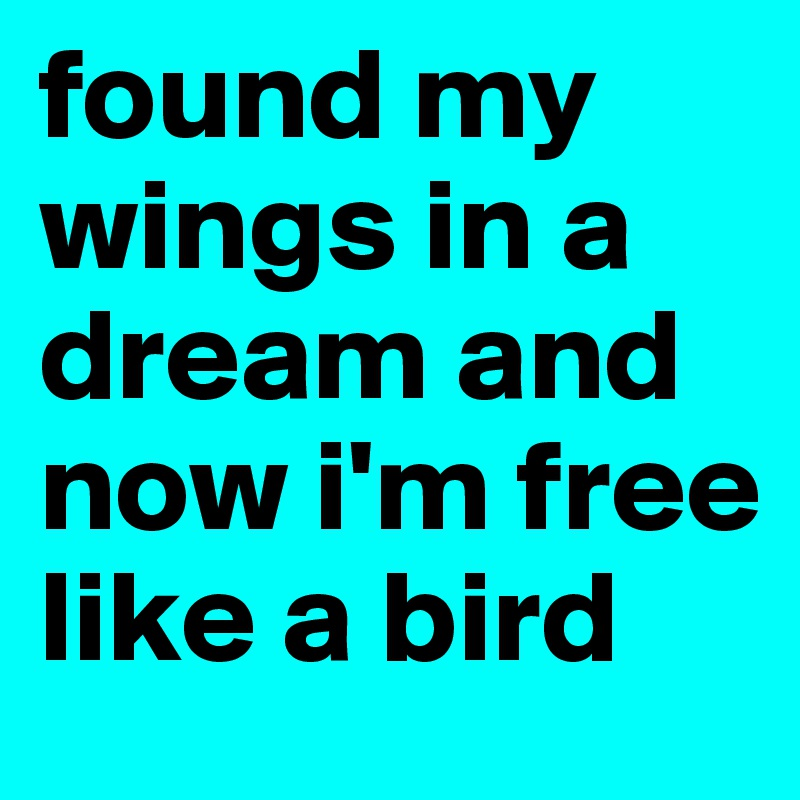 found my wings in a dream and now i'm free like a bird