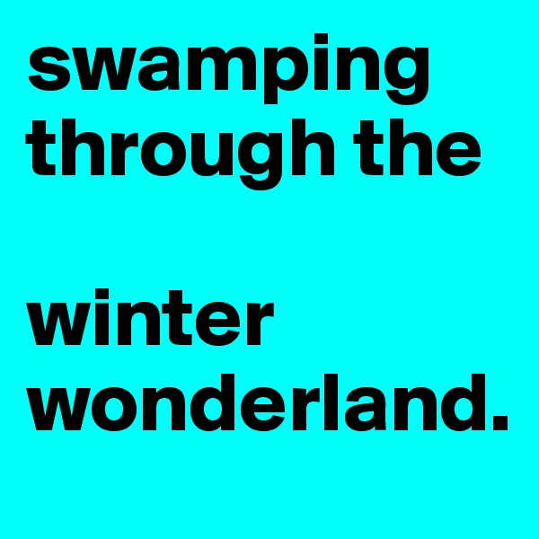 swamping through the    winter wonderland.