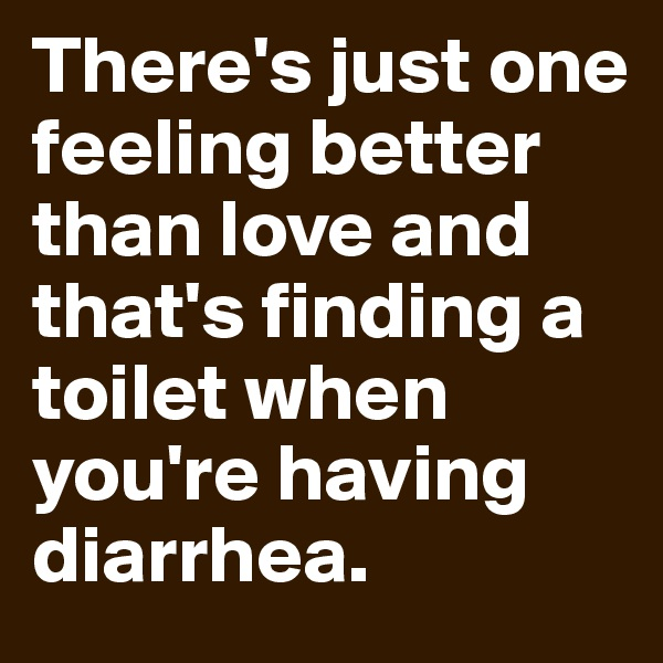There's just one feeling better than love and that's finding a toilet when you're having diarrhea.