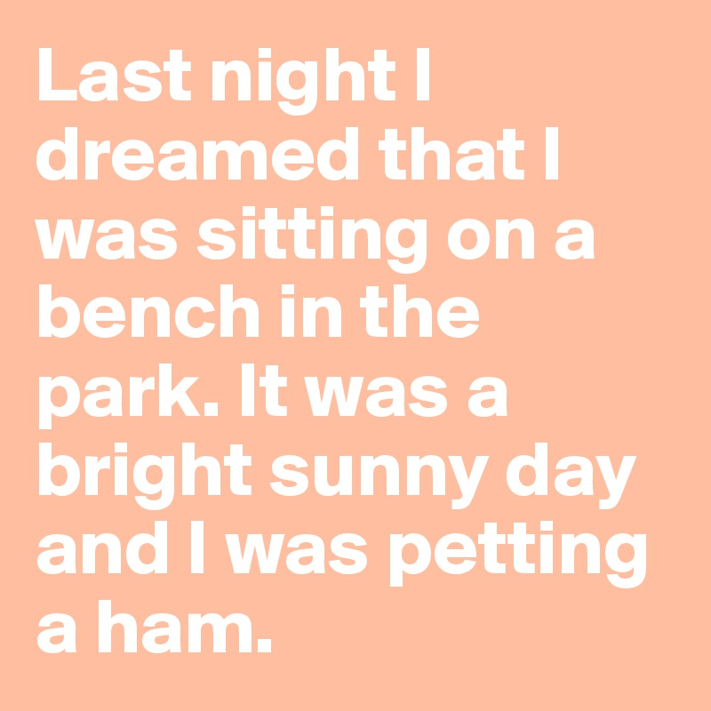 Last night I dreamed that I was sitting on a bench in the park. It was a bright sunny day and I was petting a ham.