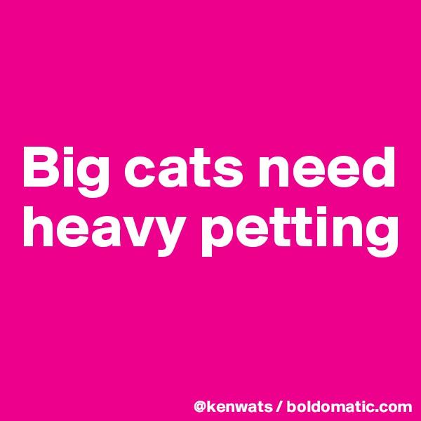 Big cats need heavy petting