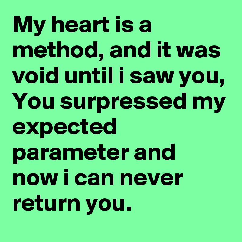 My heart is a method, and it was void until i saw you, You surpressed my expected parameter and now i can never return you.