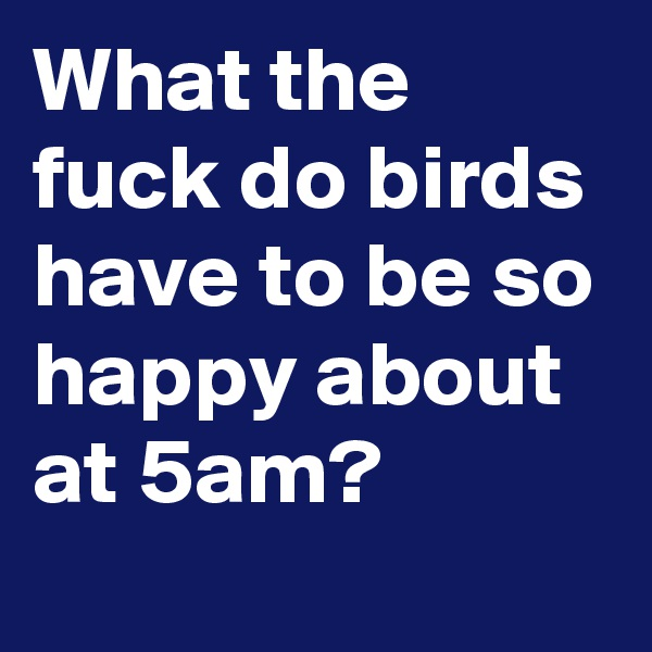 What the fuck do birds have to be so happy about at 5am?