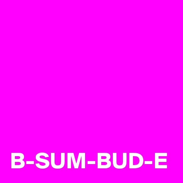 B-SUM-BUD-E