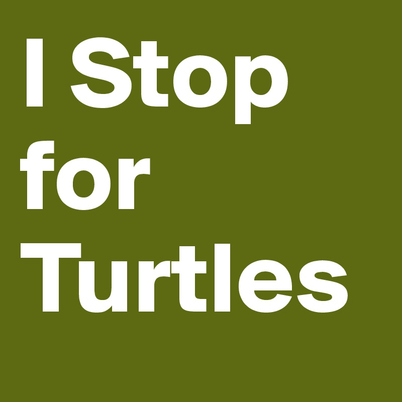 I Stop for Turtles