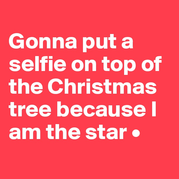 Gonna put a selfie on top of the Christmas tree because I am the star •