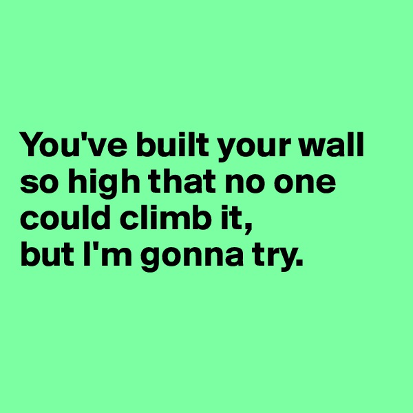 You've built your wall so high that no one could climb it, but I'm gonna try.