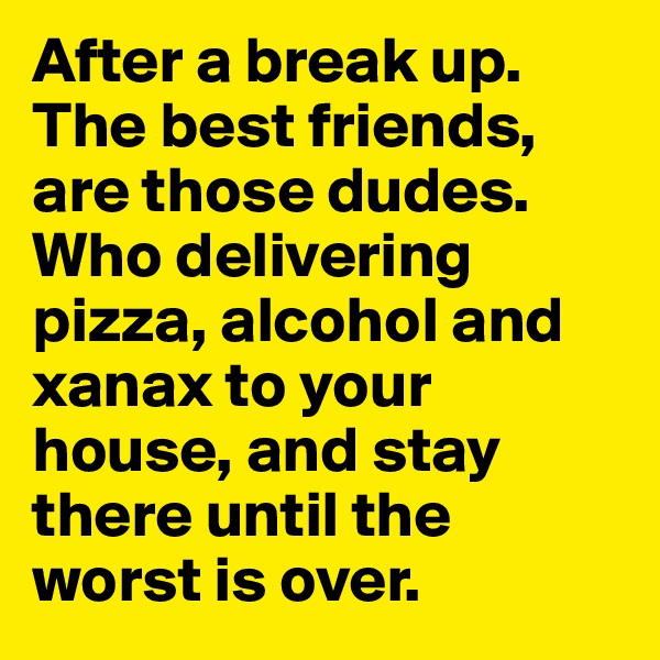 After a break up. The best friends, are those dudes. Who delivering pizza, alcohol and xanax to your house, and stay there until the worst is over.