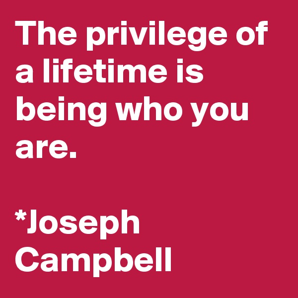 The privilege of a lifetime is being who you are.  *Joseph Campbell