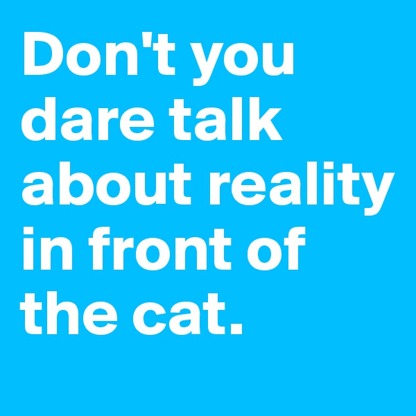Don't you dare talk about reality in front of the cat.