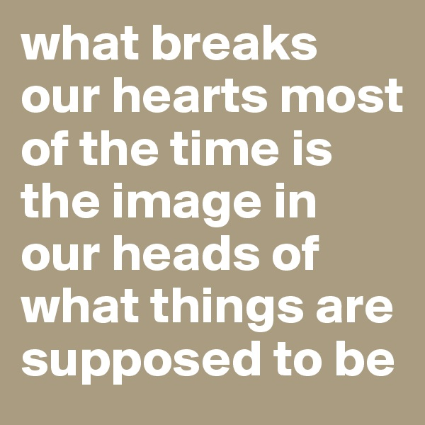 what breaks our hearts most of the time is the image in our heads of what things are supposed to be