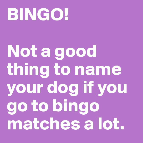 BINGO!  Not a good thing to name your dog if you go to bingo matches a lot.