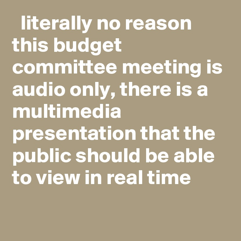 literally no reason this budget committee meeting is audio only, there is a multimedia presentation that the public should be able to view in real time