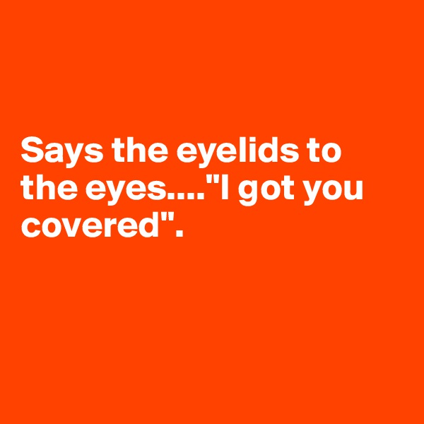 """Says the eyelids to the eyes....""""I got you covered""""."""