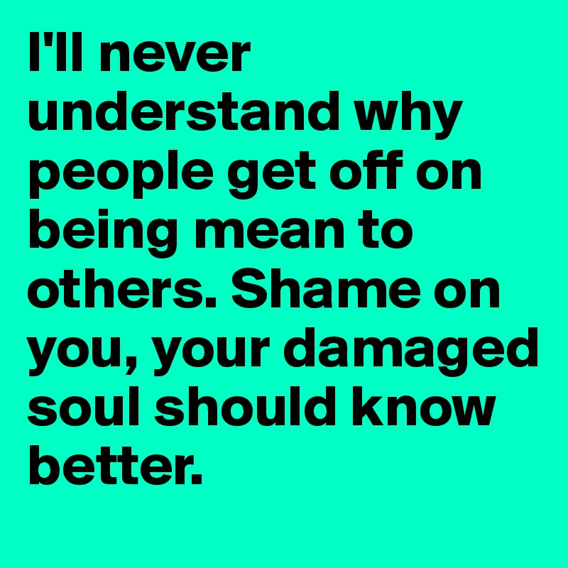 I'll never understand why people get off on being mean to others. Shame on you, your damaged soul should know better.