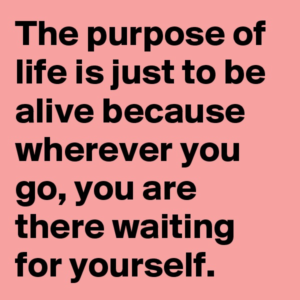 The purpose of life is just to be alive because wherever you go, you are there waiting for yourself.