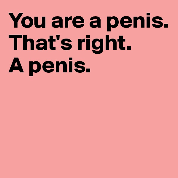 You are a penis. That's right.  A penis.