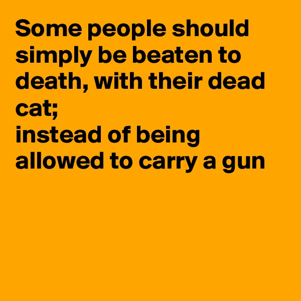Some people should simply be beaten to death, with their dead cat;  instead of being allowed to carry a gun
