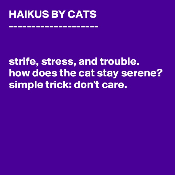 HAIKUS BY CATS --------------------   strife, stress, and trouble. how does the cat stay serene? simple trick: don't care.