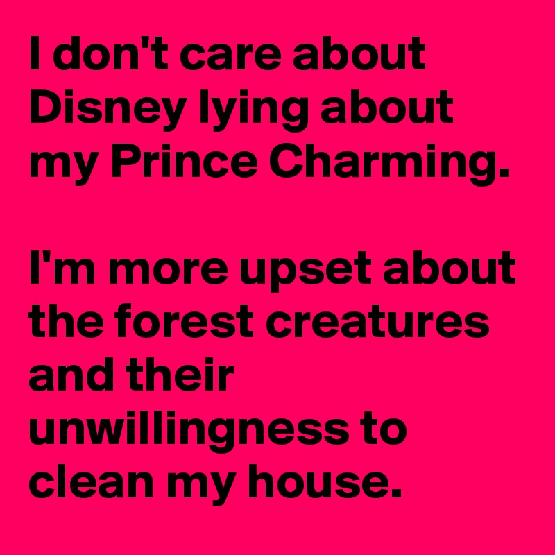 Clean My House i don't care about disney lying about my prince charming. i'm more
