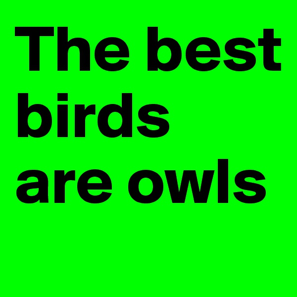 The best birds are owls
