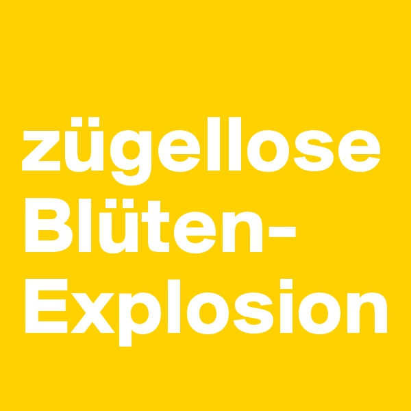 zügellose Blüten-Explosion
