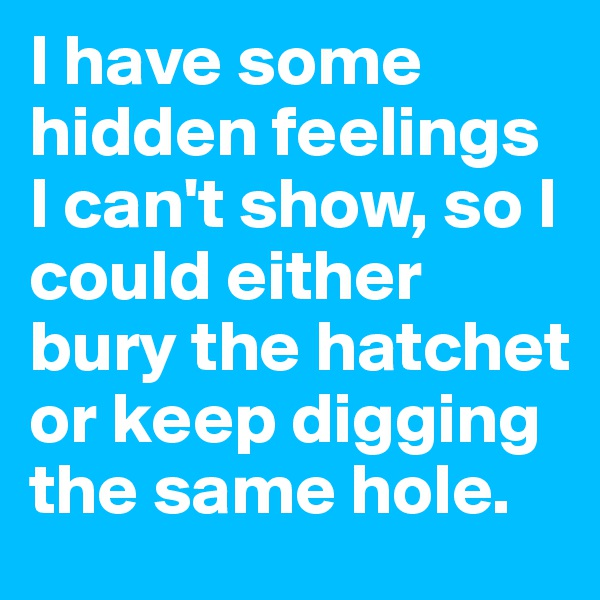 I have some hidden feelings I can't show, so I could either bury the hatchet or keep digging the same hole.