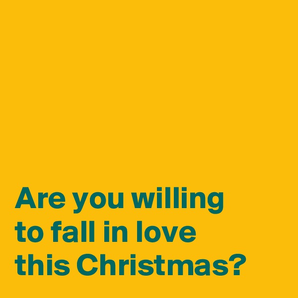 Are you willing  to fall in love  this Christmas?