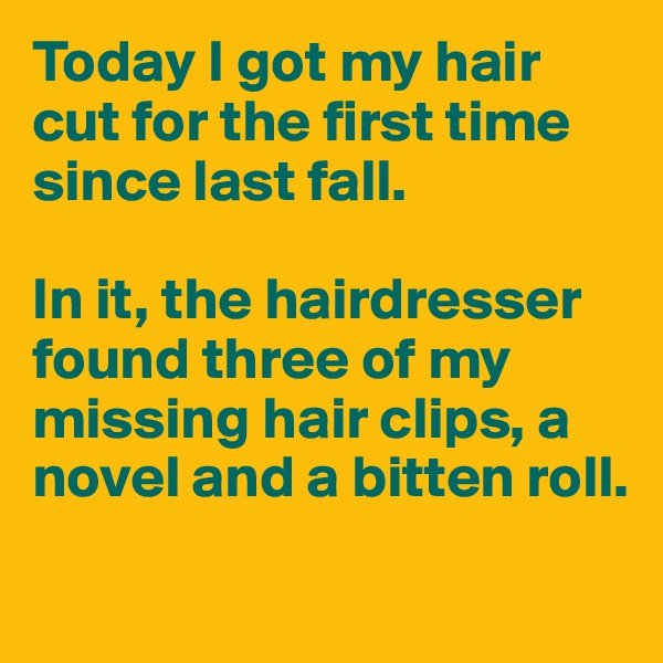 Today I got my hair cut for the first time since last fall.   In it, the hairdresser found three of my missing hair clips, a novel and a bitten roll.