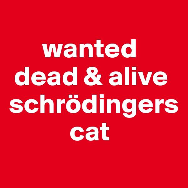 wanted  dead & alive  schrödingers               cat