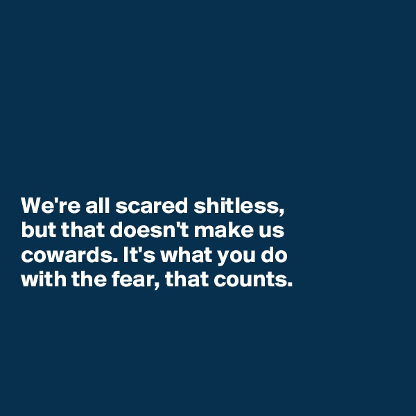 We're all scared shitless,  but that doesn't make us  cowards. It's what you do  with the fear, that counts.