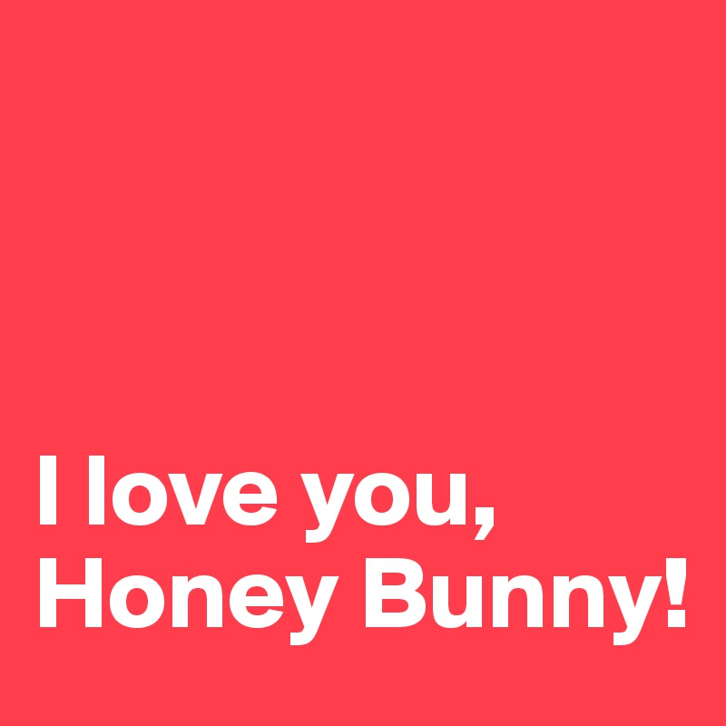i love you honey bunny