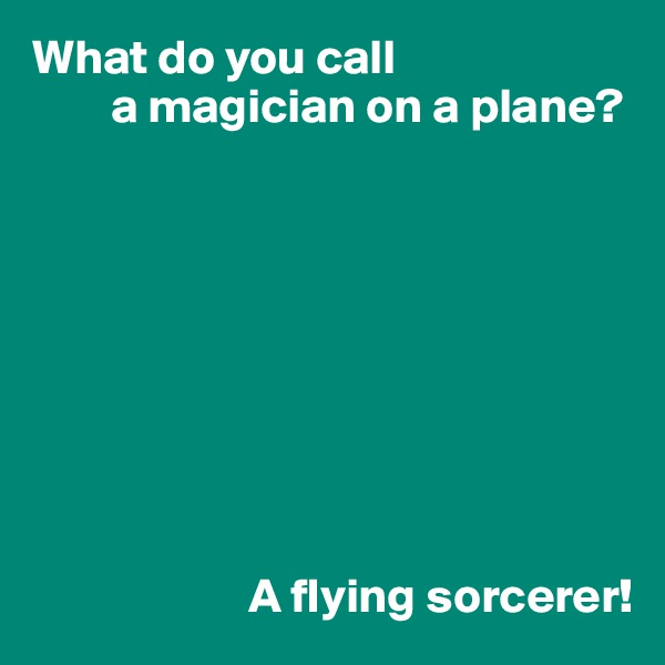 What do you call         a magician on a plane?                                A flying sorcerer!