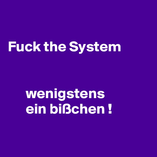 Fuck the System         wenigstens        ein bißchen !