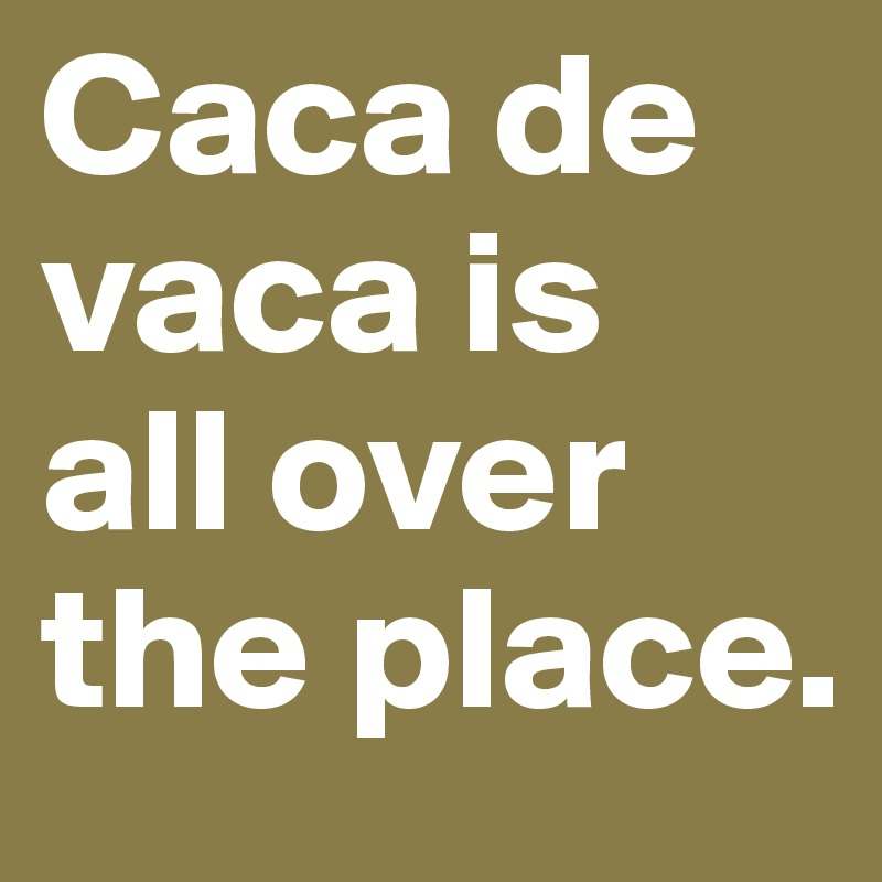 Caca de vaca is all over the place.