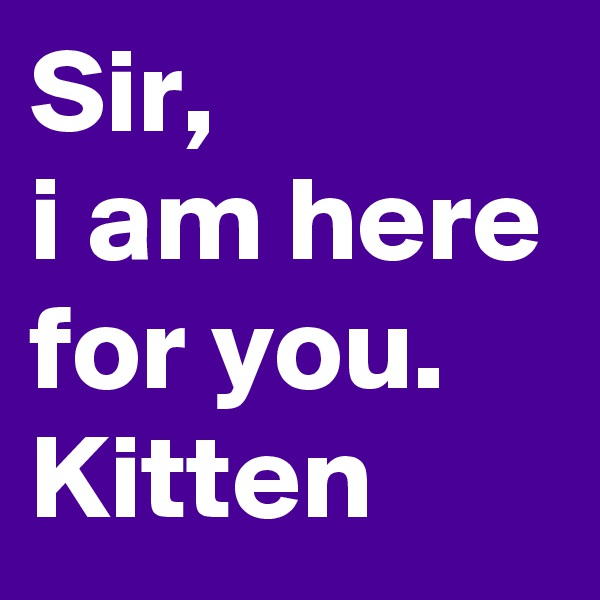 Sir, i am here for you.  Kitten