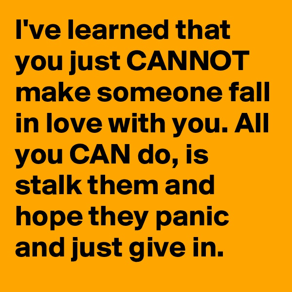 I've learned that you just CANNOT make someone fall in love with you. All you CAN do, is stalk them and hope they panic and just give in.