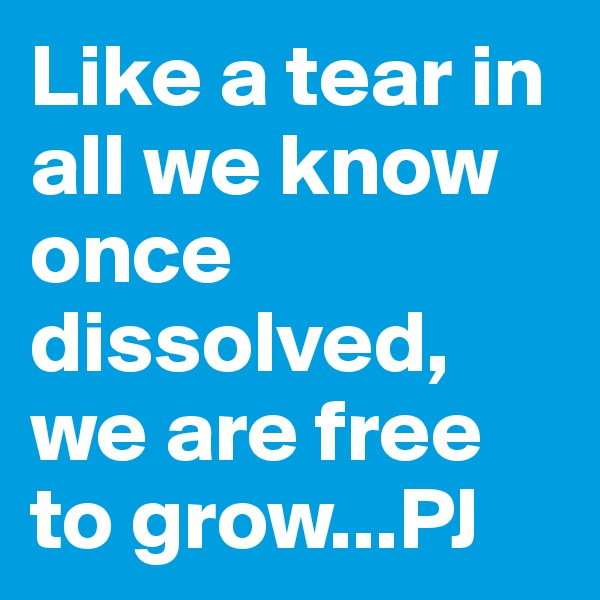Like a tear in all we know once dissolved, we are free to grow...PJ