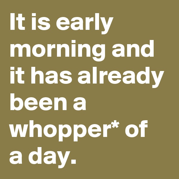 It is early morning and it has already been a whopper* of a day.