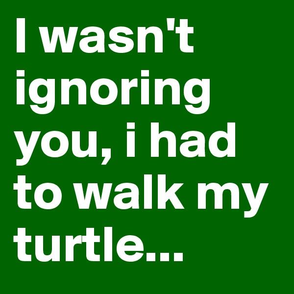 I wasn't ignoring you, i had to walk my turtle...