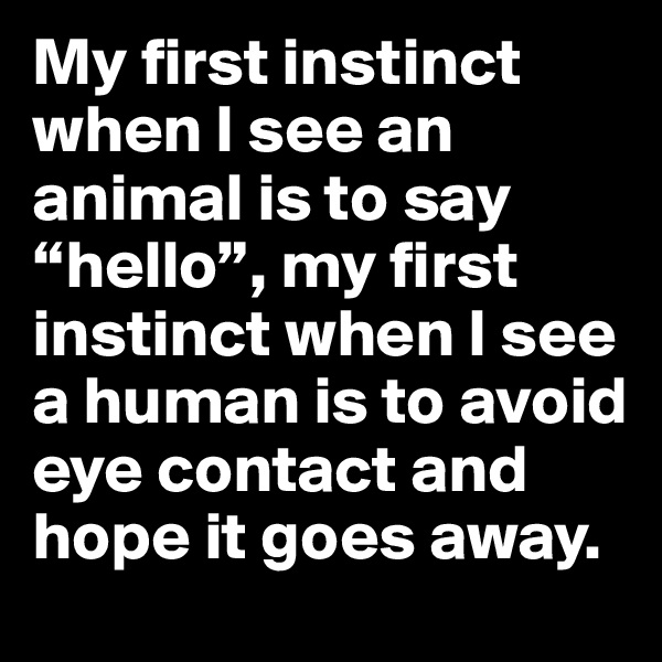 """My first instinct when I see an animal is to say """"hello"""", my first instinct when I see a human is to avoid eye contact and hope it goes away."""
