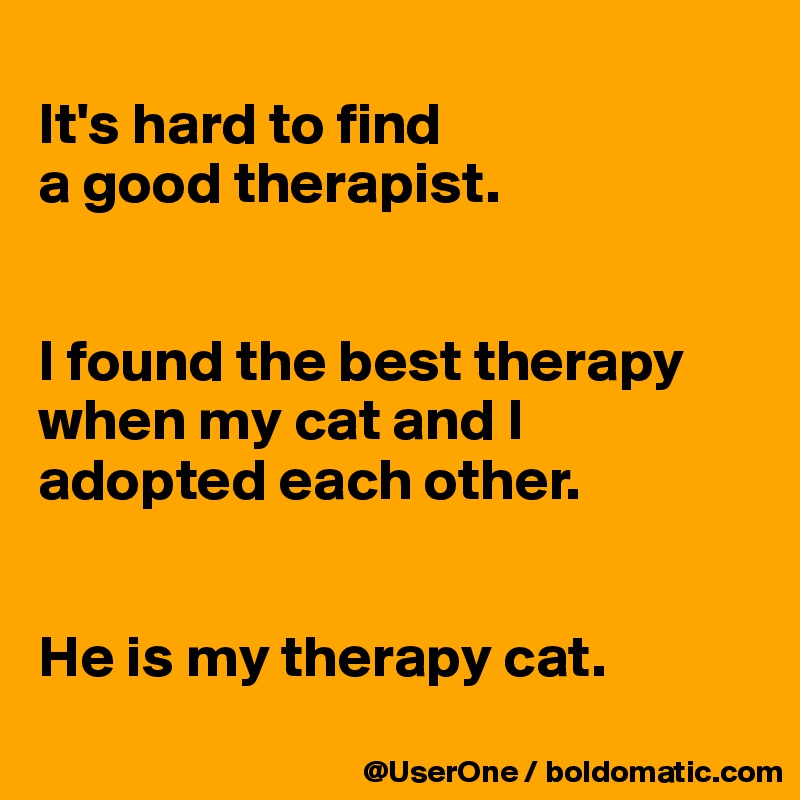 its hard to find a good therapist i found the best therapy when my cat