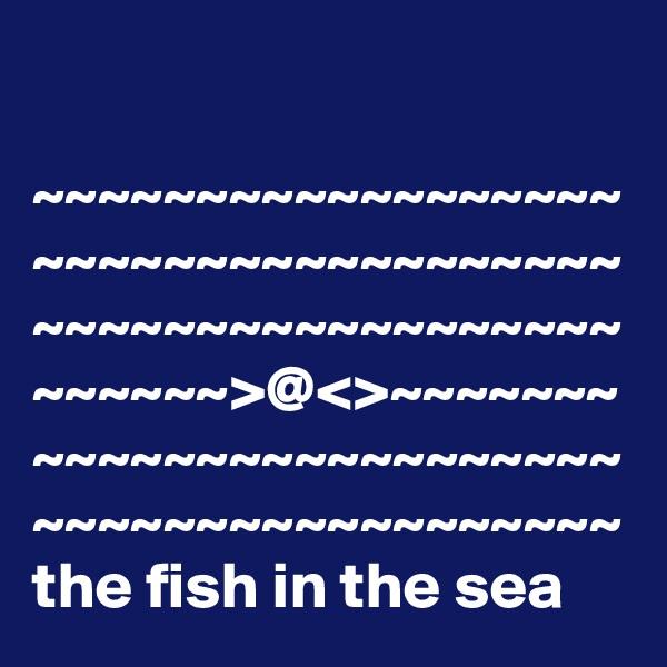 ~~~~~~~~~~~~~~~~~~~~~~~~~~~~~~~~~~~~ ~~~~~~~~~~~~~~~~~~~~~~~~>@<>~~~~~~~~~~~~~~~~~~~~~~~~~~~~~~~~~~~~~~~~~~~ the fish in the sea