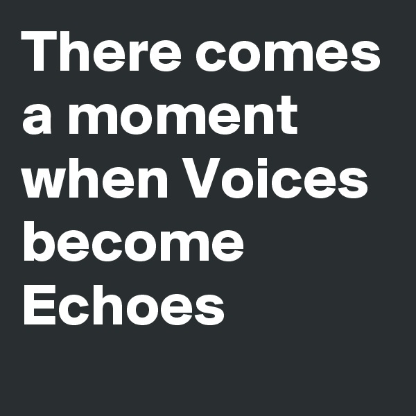 There comes a moment when Voices become Echoes