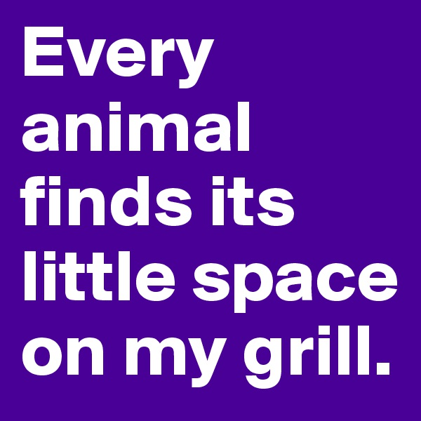 Every animal finds its little space on my grill.