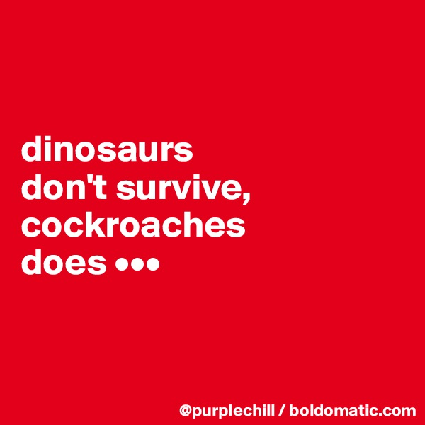 dinosaurs  don't survive, cockroaches  does •••