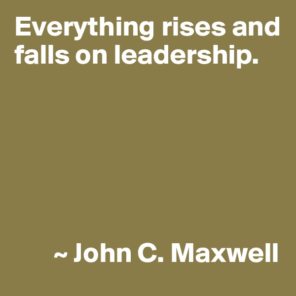 Everything rises and falls on leadership.              ~ John C. Maxwell