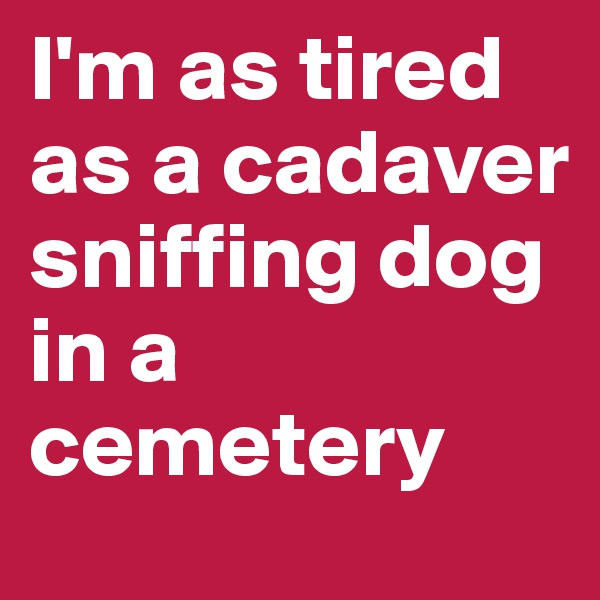 I'm as tired as a cadaver sniffing dog in a cemetery