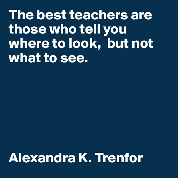 The best teachers are those who tell you where to look,  but not what to see.       Alexandra K. Trenfor
